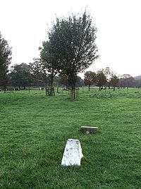 The small grave of Robert Snooks, the hangman's tree long gone. Picture courtesy of Rob Farrow and Wikipedia