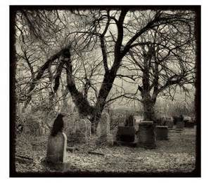 Raven's Graveyard