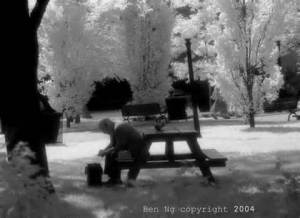 Man on Bench by www.ngphotos.com