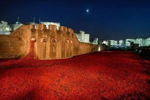 The Tower of London remembers the fallen with 888,246 poppies Picture courtesy of London Evening Standard/Rex