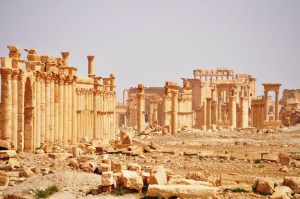 Palmyra  Picture courtesy of dict.space.4goo.net